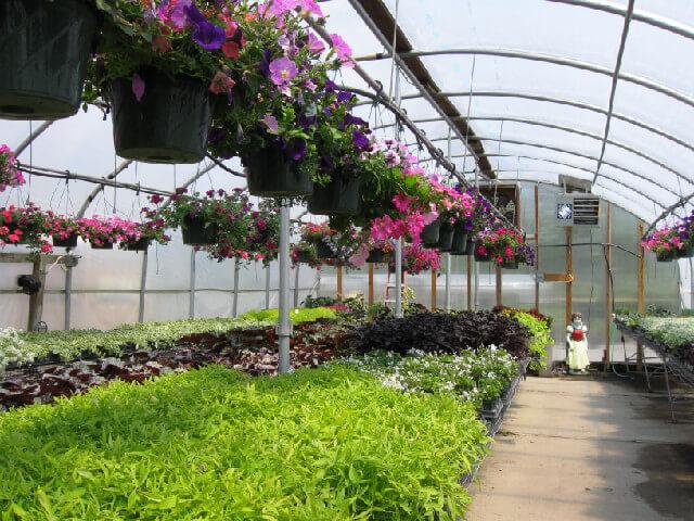 ideal-farm-garden