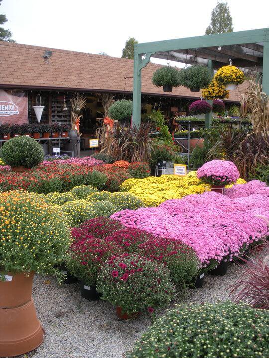 Flaggs Garden Center